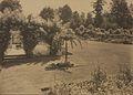 The Rose Garden, Butcharts Gardens, Victoria (HS85-10-42130).jpg