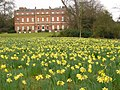 The Wilderness, Clandon Park - geograph.org.uk - 1772986.jpg