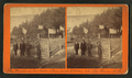 The Woodbury Sanborn Memorial Stone, at The Weirs, N.H, from Robert N. Dennis collection of stereoscopic views 2.png