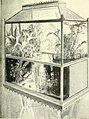 The complete aquarium book; the care and breeding of goldfish and tropical fishes (1936) (20645327856).jpg