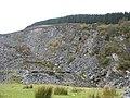 The infilled deep pit of Rhiw Fachno Quarry - geograph.org.uk - 598488.jpg