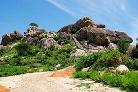 Tirumalai Jain temple hill.JPG