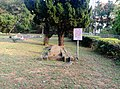 Tombs of former military personnels in Hsinchu.jpg
