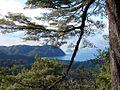 Totaranui views from Inland Track - panoramio.jpg