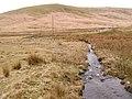 Towards Esgair Rhiwlan - geograph.org.uk - 152446.jpg