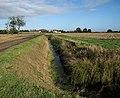 Track, ditch, field - geograph.org.uk - 1554178.jpg