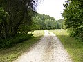 Track running through Beckdale - geograph.org.uk - 532901.jpg