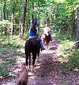 Trail ride pic web (5910378286).jpg