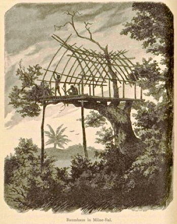Treehouse at Milne Bay - Papua New Guinea - 1884-1885