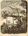 Treehouse at Milne Bay - Papua New Guinea - 1884-1885.jpg