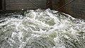Trent-Severn Waterway, Lock 20, Peterborough (502478) (16019227063).jpg