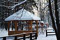 Troparevsky park - panoramio (9).jpg