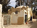 Tunis village -Fayoum by Hatem Moushir 3.JPG