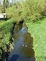Two drakes on the Ingrebourne - geograph.org.uk - 2349616.jpg