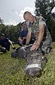 US Navy 030530-N-5862D-200 Chief Aviation Boatswain's Mate Rodger Wisdom and volunteers from the Navy fire department wrangle a ten-foot alligator.jpg