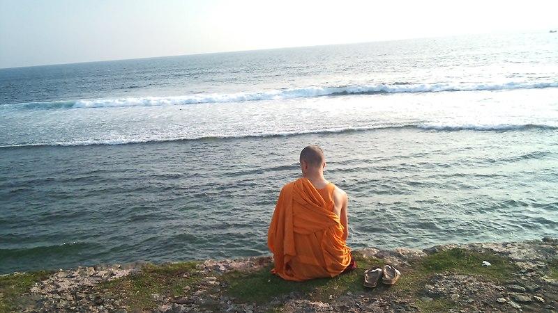 File:Un bonze Sri Lankais en regardant la marée (vue arrière - 23 janvier 2011).jpg