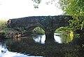 Under the bridge near Didlington - geograph.org.uk - 591538.jpg