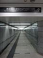 Underground Passageways, Shinjuku (9409702672).jpg