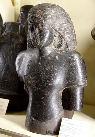 Amelia Edwards - Upper part, figure of an official of Amenhotep III, from a double statue. From Bubastis (Tell-Basta), Egypt. From the Amelia Edwards Collection. The Petrie Museum of Egyptian Archaeology, London.