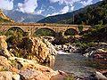 Vallee du Fango-Pont de Manso.jpg