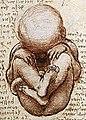 Views of a Foetus in the Womb detail.jpg