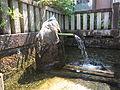 Village Jyuou, spring, Hikone, Shiga Prefecture.jpg