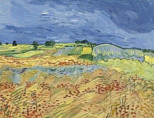 The Fields