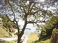 Vista do cais, e da casa de quarentena, para ingresso na ilha.jpg