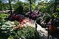 Vogelpark Walsrode 28 ies.jpg