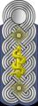 WSS Staf-Oberf-Medical v.png