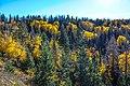 W down Hwy 14 toward Cedar, Utah - (22823364701).jpg