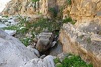 Wadi-Makukh-573.jpg