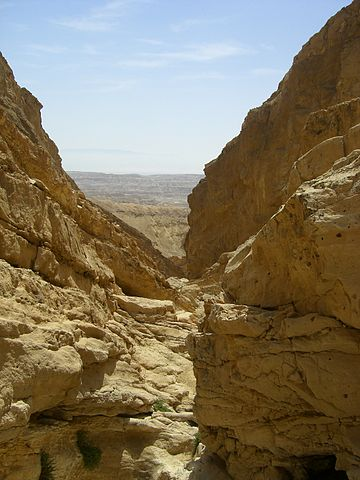 360px-Wadi_akrabim.jpg