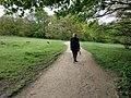 Walking the Dog, Hampstead Heath, London - geograph.org.uk - 1860512.jpg