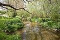 Wallington River - geograph.org.uk - 1283229.jpg