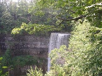 Tew's Falls - Image: Waterdawn Tew's Falls 5