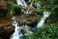 Waterfalls-forest-landscape - Virginia - ForestWander.jpg