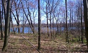 Waterloo State Recreation Area - Cedar Lake, in the southeastern corner of Waterloo State Recreation Area