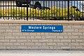 Western Springs Station Illinois-0011.jpg