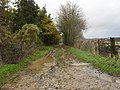 Wet and muddy track - geograph.org.uk - 1613950.jpg
