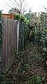 White Roding public footpath, Essex, England.jpg