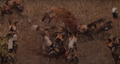 Wild Dogs Attack Spotted Hyenas to Defend Their Kill HD 6.png