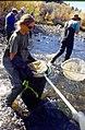 Wild trout project e walker river bridgeport0086 (25671017614).jpg