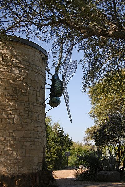 File:WildflowerCtr dragonfly onTower.jpg