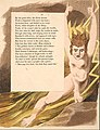 William Blake illustration to Night Thoughts Plate 95.jpg