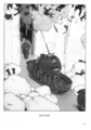 William Heath Robinson Inventions - Page 077.png