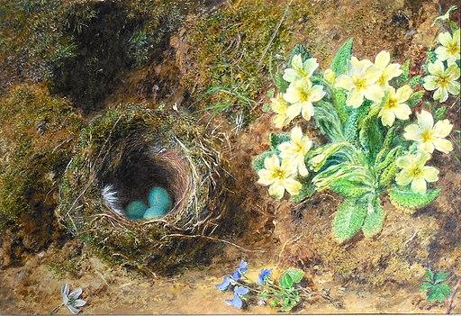 William Henry Hunt, Bird's Nest and Primroses, c. 1855