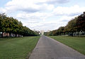 Windsor Castle Long Walk.jpg