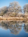 Winter-Regnitz-PC310020-PSD.jpg