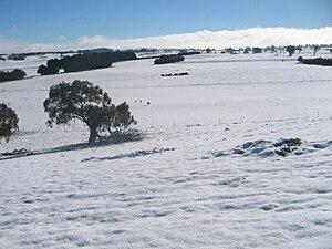 Taralga - Winter in Taralga